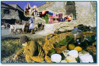 Crete Local Products